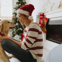 Hounds for the Holidays - Whole Dog Journal